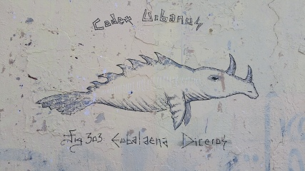 codexurbanus