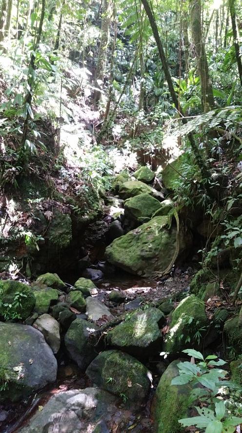 La Soufrière Guadeloupe (1)