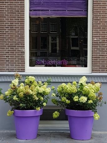 Amsterdam_aout 2017 (211)