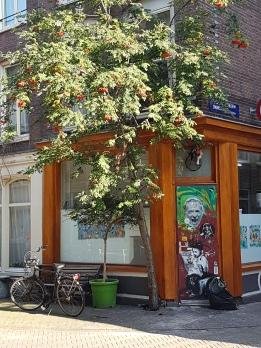 Amsterdam_aout 2017 (257)