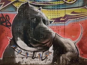 CAPUCINES DU STREET ART (1)