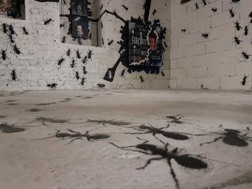 CAPUCINES DU STREET ART (22)