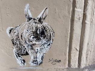 street art montmartre (5)