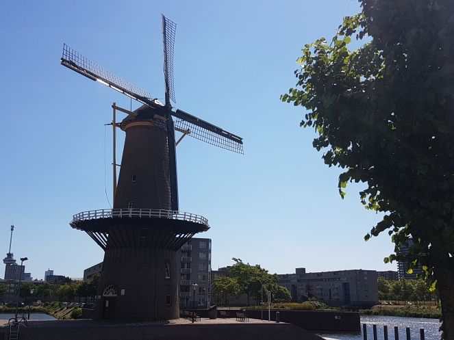 Delfshaven_Rotterdam (1)