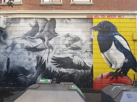Street art Rotterdam (7)