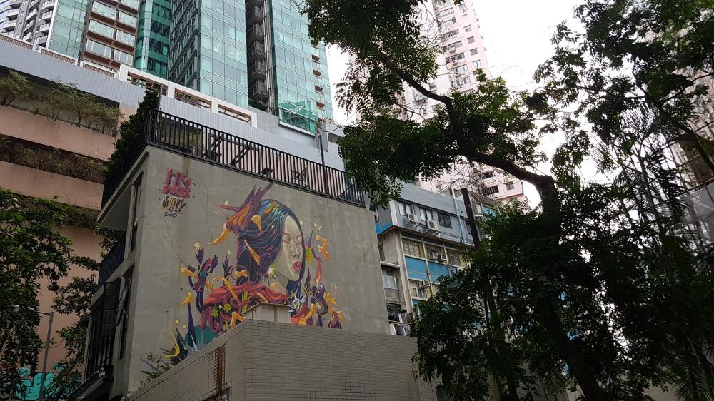 Sheep_Hong Kong (1)