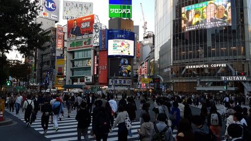 Tokyo (26)